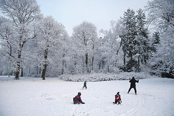First Season's Snowfall In Berlin