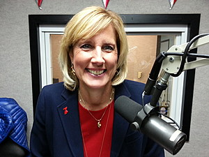 Claudia Tenney during a 2015 Binghamton radio interview. (Photo: Bob Joseph/WNBF News)