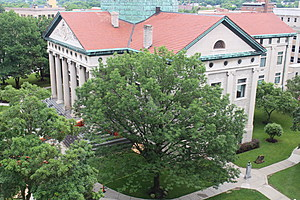 Workers will inspect the exterior of the Broome County Courthouse. (Photo: Bob Joseph/WNBF News)
