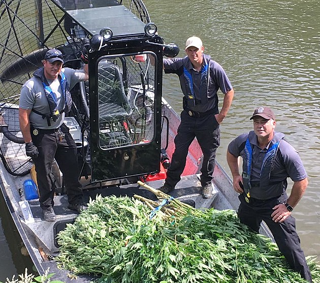 Members of a state police Underwater Recovery Team posing with marijuana removed from an island in the Susquehanna River. (Photo: New York State Police/Facebook