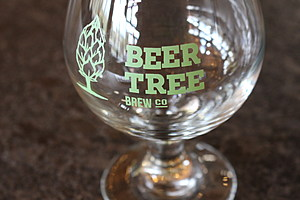 A glass featuring the Beer Tree Brew Co. logo. (Photo: Bob Joseph/WNBF News)