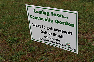 More community gardens are to be developed by VINES in the Binghamton area over the next few years. (Photo: Bob Joseph/WNBF News)